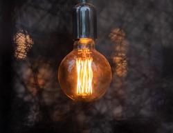 Hanging glowing lightbulb. Framed by crosshatch web-like design.