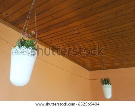Hanging planter #652565404