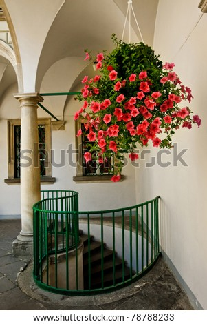 hanging pot with flowers in...