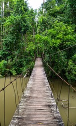 Hanging wooden bridge in Khao Yai national park, Thailand. Bridge in the jungle.
