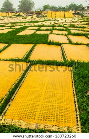 HaNoi VietNam CuDa village March 17 2014 Vietnamese Sesame Rice Crackers are being dried