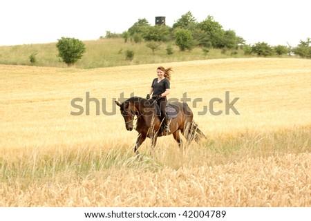 Hanoverian. Equestrienne gallops on hillside.