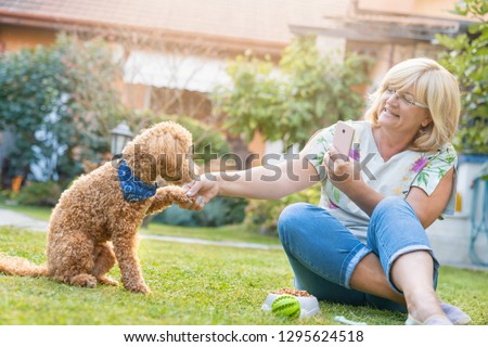 Happy adult woman shaking hands with domestic dog poodle while taking a picture in back yard