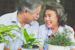 Happy asian elderly couple smiling health care and have a happy life after retirement stay home and plant trees in pots.