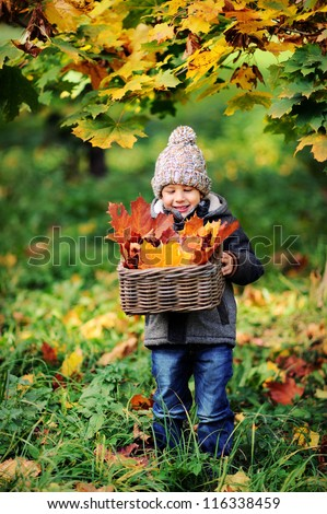 Happy baby playing with leaves in nature. Sunny autumn day. Boy in a cap.