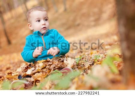 Happy baby sitting in fallen leaves