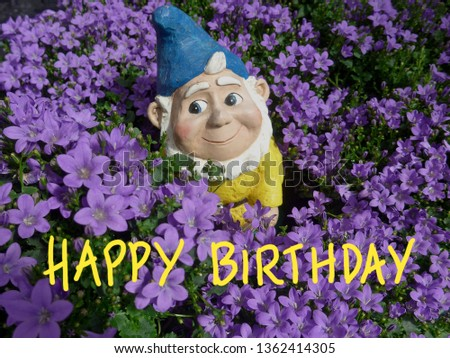 HAPPY BIRTHDAY. Greeting card for a birthday. A cute, smiling dwarf out between purple flowers.
