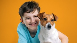 Happy boy and dog Jack Russell Terrier hugs her with tenderness smiling, look at camera on yellow background. Pets. Emotions of people. Childhood. Life style. Pet care