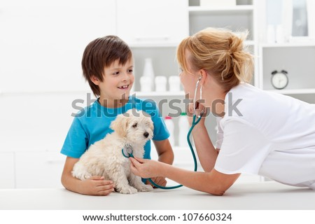Happy boy and his fluffy dog at the veterinary checkup - focus on pet