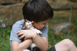 Happy boy holding and hugs his kitten. Child first time cuddle little kitty. Kids play with pets. Children and domestic animals