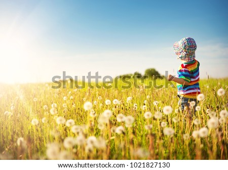 Happy boy standing in grass on the fieald with dandelions at sunny summer evening. child outdoors in nature