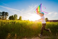 happy boy with a kite running in a meadow in summer in nature. Summer children's holidays.