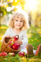Happy child with basket of red apples in autumn park against golden sunny background