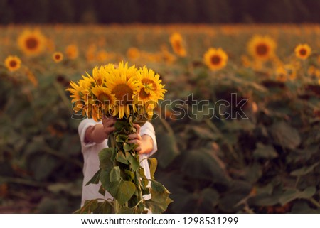 Happy child with bouquet of beautiful sunflowers in summer sunflower field on sunset. Mother day concept