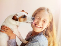 Happy child with dog. Portrait girl with pet. Jack Russell licks a teen