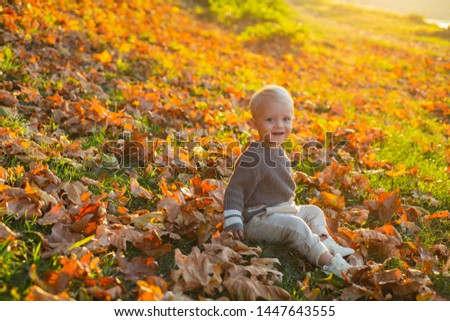 Happy childhood. Sweet childhood memories. Child autumn leaves background. Warm moments of autumn. Toddler boy blue eyes enjoy autumn. Small baby toddler on sunny autumn day. Warmth and coziness.