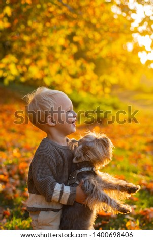 Happy childhood. Sweet childhood memories. Child play with yorkshire terrier dog. Toddler boy enjoy autumn with dog friend. Small baby toddler on sunny autumn day walk with dog. Warmth and coziness.