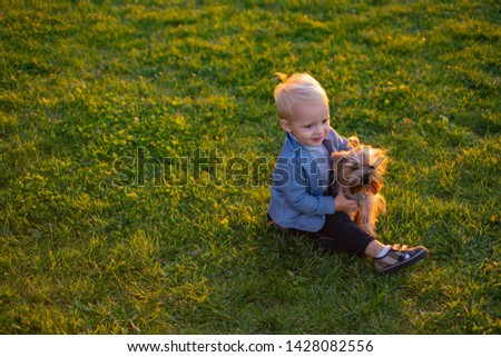 Happy childhood. Sweet childhood memories. Child play with yorkshire terrier dog. Toddler boy enjoy leisure with dog friend. Small baby toddler walk with dog. True friendship. Best friends forever. #1428082556