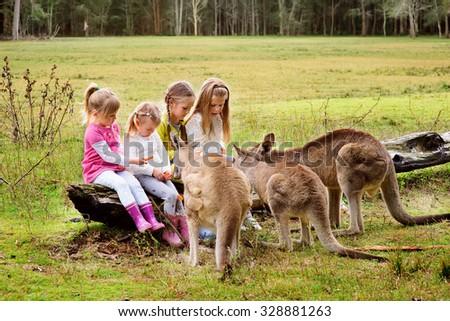 happy children feeding kangaroo ...