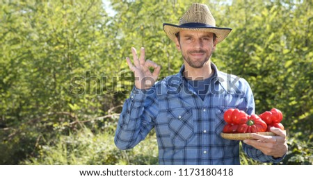 Happy Confident Farmer Man Holding Red Peppers and Showing Ok Sign in Bio Vegetables Garden #1173180418