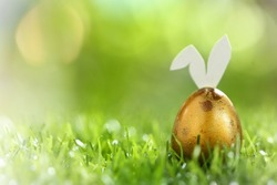 Happy easter day on april, Easter gold eggs and cute bunny in green grass. Selective focus and toned image.