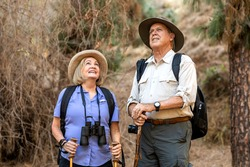 Happy elderly couple enjoying nature in the Californian forest