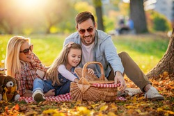 Happy family having picnic in park.Young happy family of three having fun together.Family fun outside.