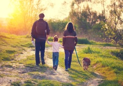 Happy family with dog walking in the village at sunset  back to camera
