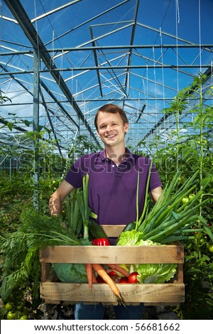 Happy farmer with vegetable box in a greenhouse - stock photo