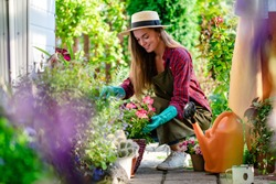 Happy gardener woman in gloves and apron plants flowers on the flower bed in home garden. Gardening and floriculture. Flower care