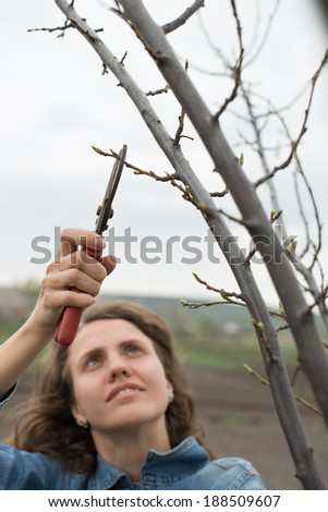 Happy gardener woman using pruning scissors in orchard garden. Pretty female worker portrait with pruners