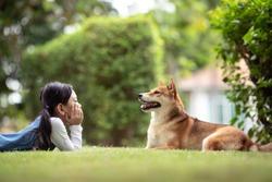 Happy Girl and dog Shiba Inu are enjoying playing in a sunny summer garden.