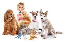 Happy girl with cute pets on white background
