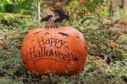Happy Halloween pumpkin outside.