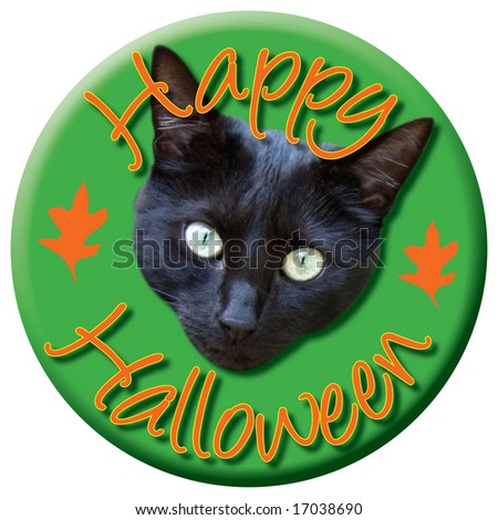 Happy Halloween type button with black cat head.