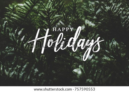 Happy Holidays Text Over Winter Evergreen Branches Covered in Snow #757590553