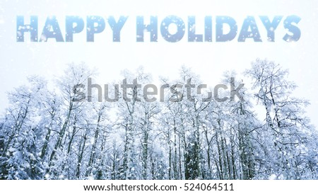 HAPPY HOLIDAYS words on winter background #524064511