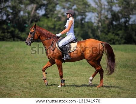 Happy horseback rider - stock photo