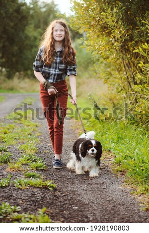 happy kid girl walking with her cavalier king charles spaniel dog on summer country road. Training her puppy and having fun.  Photo stock ©
