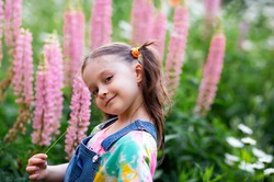 happy kid girl with ponytails in a denim overalls with shorts and a multi-colored t-shirt stands among a flower field. pink lupins.