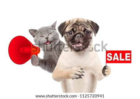 happy kitten and puppy with a megaphone and sales symbol. isolated on white background
