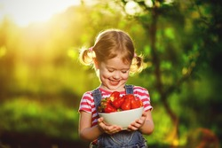 happy laughing child girl with ripe strawberry in the summer on the nature
