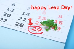 Happy Leap day. Calendar with marking in red pin of 29 february date. calendar and frog. Background Leap day leap year.