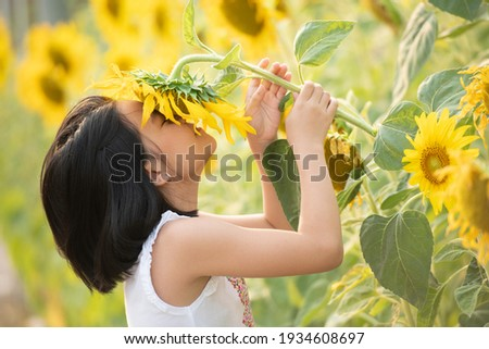 happy little asian girl having fun among blooming sunflowers under the gentle rays of the sun. child and sunflower, summer, nature and fun. summer holiday. little girl smelling a sunflower. ストックフォト ©