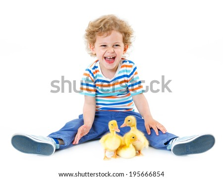 Happy little boy with cute ducklings isolated on white background