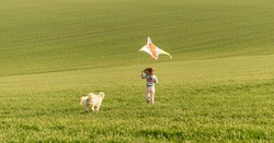 Happy little girl running with kite on green field