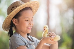 happy little girl with of small ducklings sitting outdoor. portrait of an adorable little girl, preschool or school age, happy child holding a fluffy baby gosling with both hands and smiling.