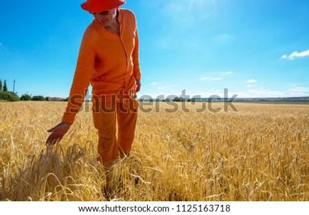 Happy man in yellow wheat field #1125163718