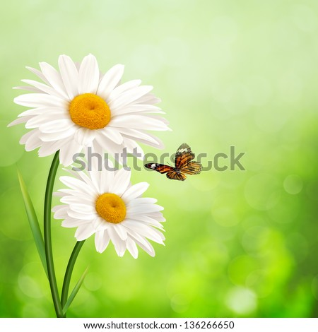 Happy meadow. Abstract summer backgrounds with daisy flowers
