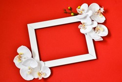 Happy Mother's Day, Women's Day, Valentine's Day or Birthday. White frame with orchid flowers on a red background. minimalism. Greeting card. View from above. Place for text.